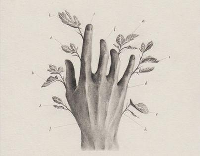 "Check out new work on my @Behance portfolio: ""Hand Estudies / estudio de manos. 2016"" http://be.net/gallery/40927533/Hand-Estudies-estudio-de-manos-2016"