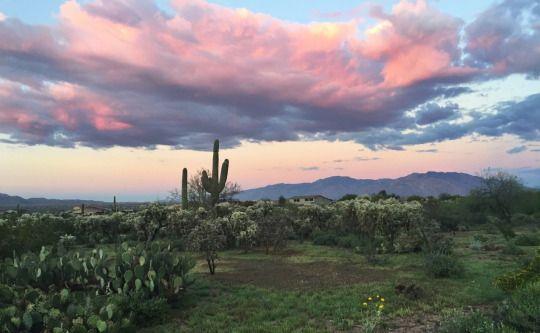 romantic places cactus clouds - photo #3