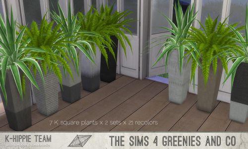 K Square Plants Agave  I + Fern x 3 sets I by k-hippie via tumblr Maxis Match I Sims 4