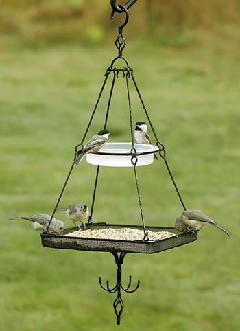 Cute bird bath and feeder in one.  Gotta figure out how to DIY one myself.
