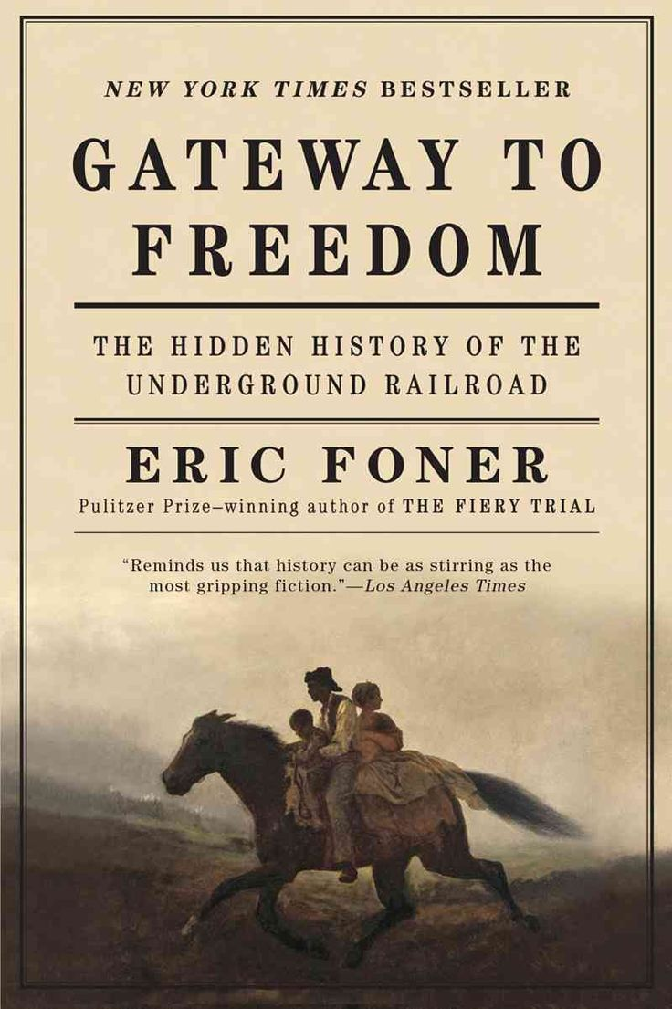 Gateway To Freedom: The Hidden History Of The Underground Railroad  (paperback)