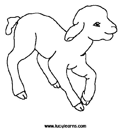 animal coloring sheets amazing coloring pages animal printable coloring pages - Pictures To Colour For Toddlers