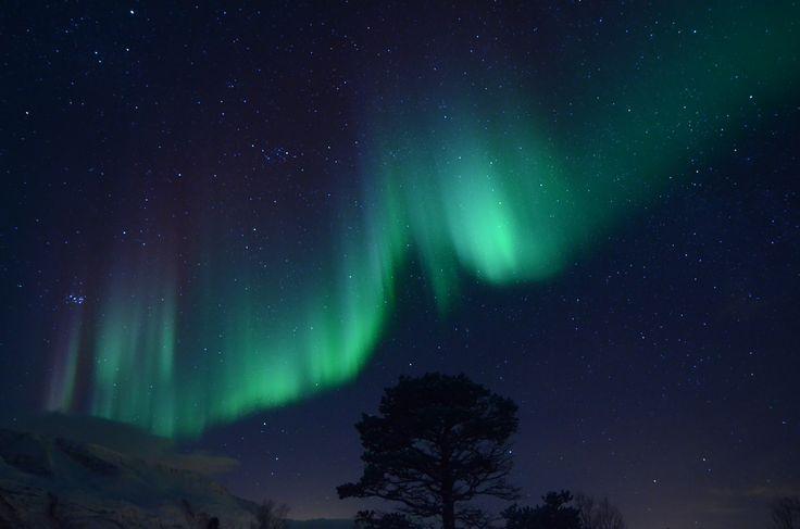 GuideGunnar`s Aurora chase! #guidegunnar