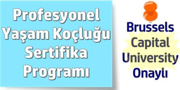 Profesyonel Yaşam Koçluğu Sertifika Programı Gaziantep – UniDestek