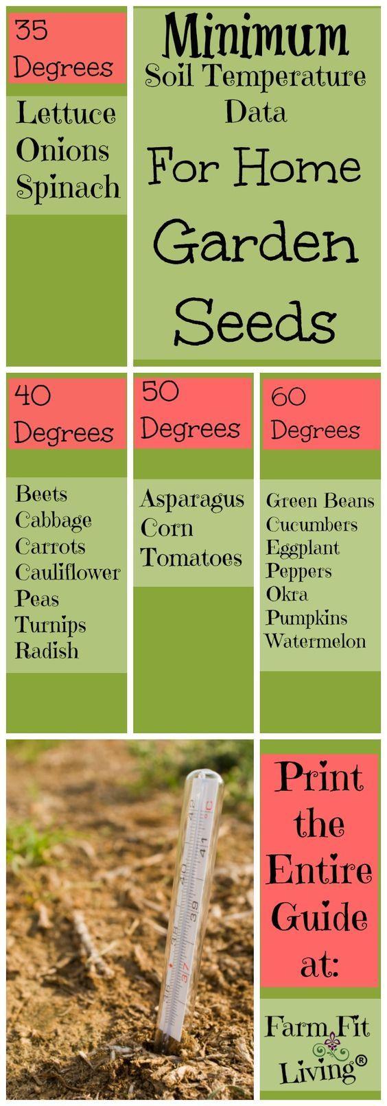 Check soil temperature data before planting seeds in the soil | Measure soil temperature | Planting the Garden | Home Gardens