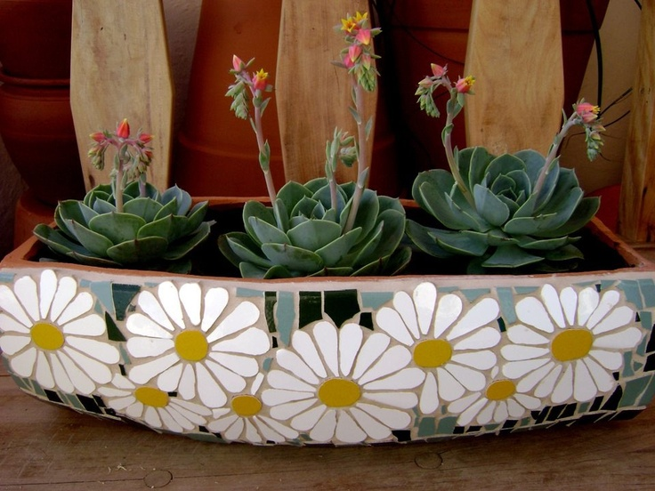 Two of my fav things together! Mosaic and succulents :-)