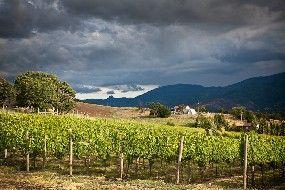 Grizzly Peak Winery:  Ashland