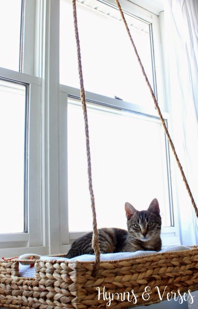 DIY Ify: 14 Neat Pet DIY Ideas. Itu0027s Almost Impossible To Keep My Cats Off  Of Any Tables ...