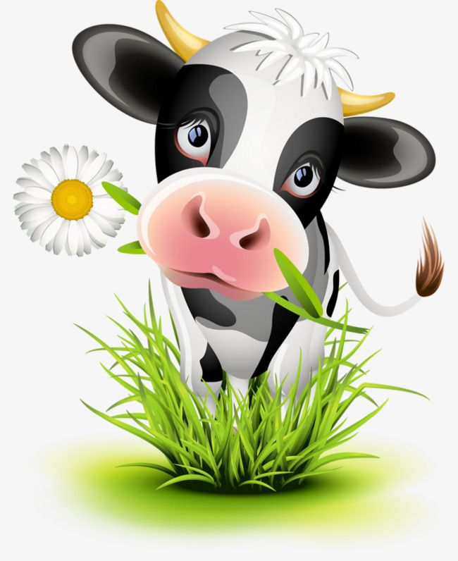 Image Result For Cow Picture Cow Clipart Cow Art Cartoon Cow