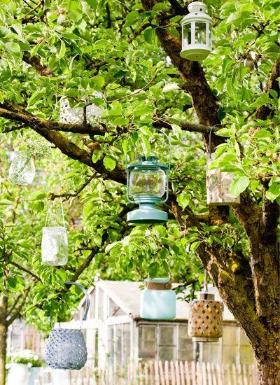 verzameling lantaarns in de boom  Een boom is de ideale hangplek voor lantaarns en windlichten. Daar raakt je nooit op uitgekeken. Tip: Glazen windlichtjes lenen zich ook goed als hangende vaasjes voor kleine plukboeketten.
