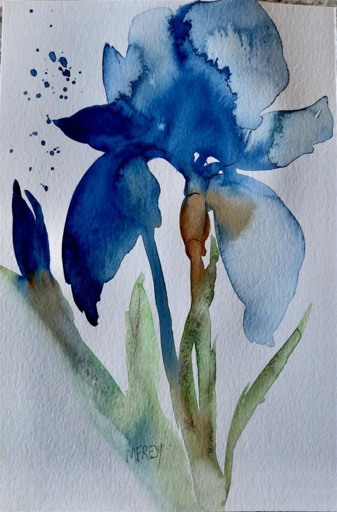 Blue Iris Floral 0266 Original Fine Art By Michelina Frey Art