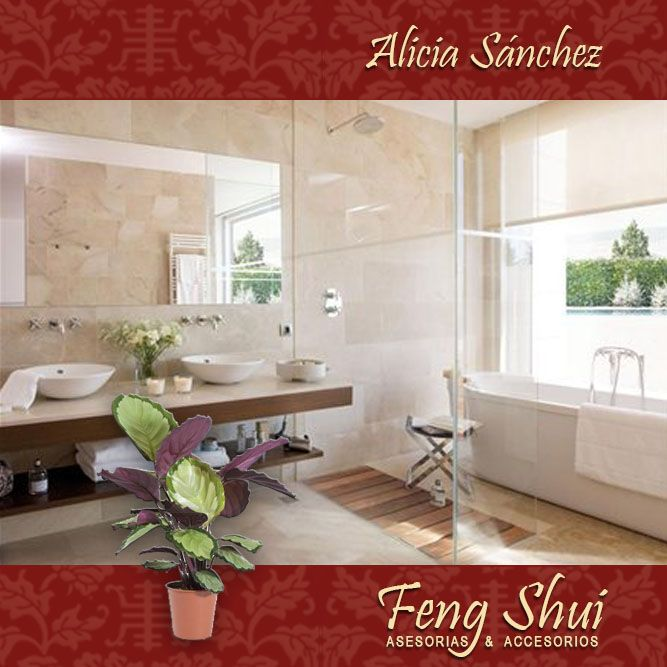 143 best feng shui images on Pinterest  Spirituality ...