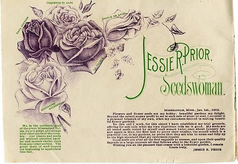 """The interior of Jessie R. Prior's 1902 catalog contains a letter from Jessie saying """"I consider it a triumph of my own, when my customers succeed in making beautiful flower gardens."""" She goes on to say, """"I have established my trial grounds, offering for sale only what my own experience tells me is good"""" and that her seeds are """"true to name and fully up to the high standard that my customers require."""""""