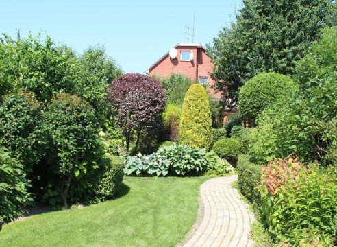 Древесные композиции в саду Екатерины Локшиной