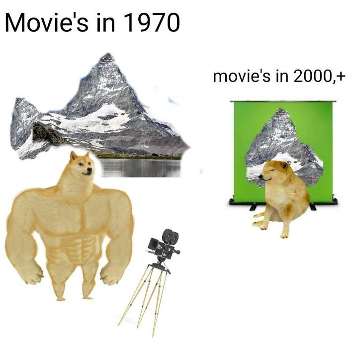 Then Vs Now Doggo Meme Template History Vs Now 700x480 Modelo De Meme Memes Memes Engracados