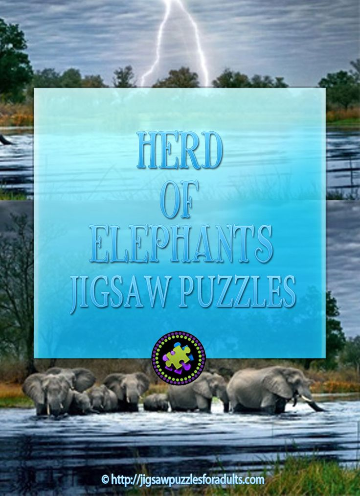 Herd of Elephants Jigsaw Puzzle by Artist Alexander von Humboldt is the perfect 2000 piece Panoramic jigsaw puzzle for anyone that loves elephants! Perfect for the whole family!