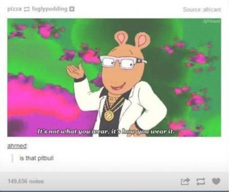 """""""Is that Pitbull"""" XD hahahaha This is my favorite pin of all time I think!"""