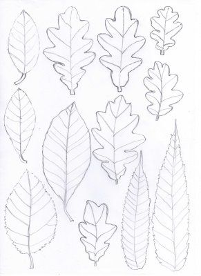 Leaf templates. Felt, paper bags, whatever! Thanks to Bugs and Fishes!