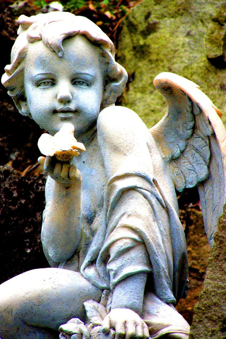 ☫ Angelic ☫ winged cemetery angels and zen statuary - Cherub with bird