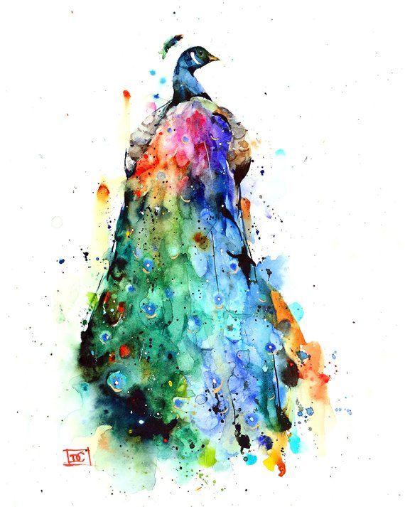Peacock Colorful Watercolor Bird Print By Dean Crouser In 2020