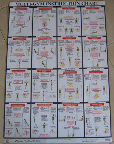 york 2001 home gym. multi-gym workout chart $37.25 (save $3.36) york 2001 home gym