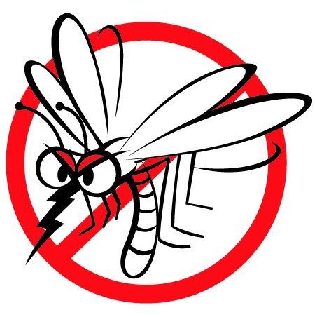 Zavard el az undok szúnyogokat természetes módon. Használd ezeket a tippeket.