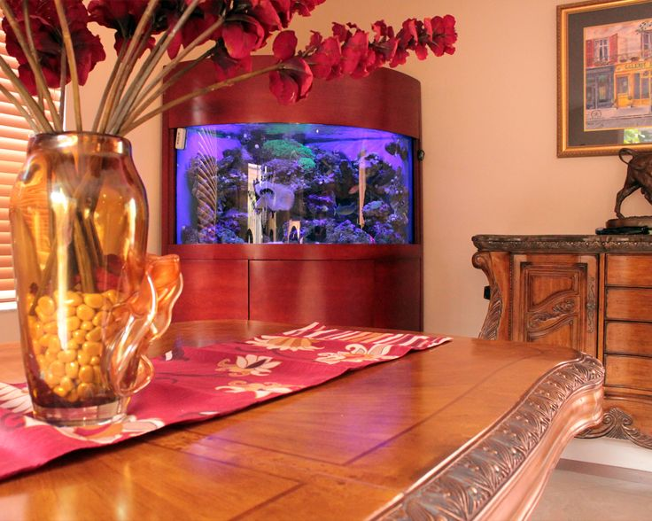 An Aquarium From Living Art Aquatic Design Makes A Major Statement In This  Modern Space.