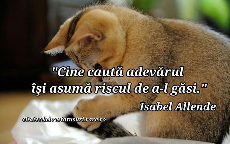 """""""Cine cauta adevarul isi asuma riscul de a-l gasi"""" Isabel Allende"""