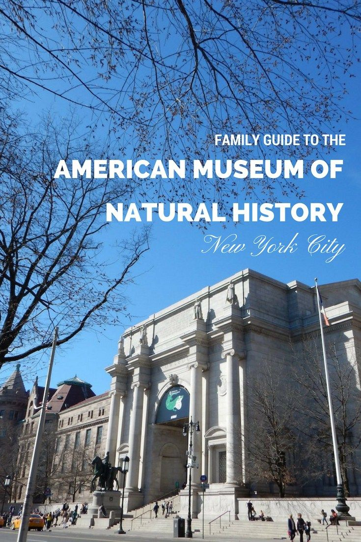 Complete family guide to the american museum of natural history in nyc travel