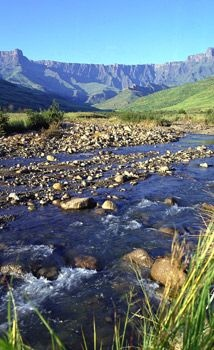 Drakensberg and Midlands - Drakensberg and Midlands