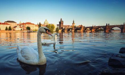 ✈ Prague : 2 ou 3 nuits à l'Hôtel Residence Select avec petit déjeuner et vols A/R depuis Paris: #PRAGUE En promotion à 139€. Séjour dans…