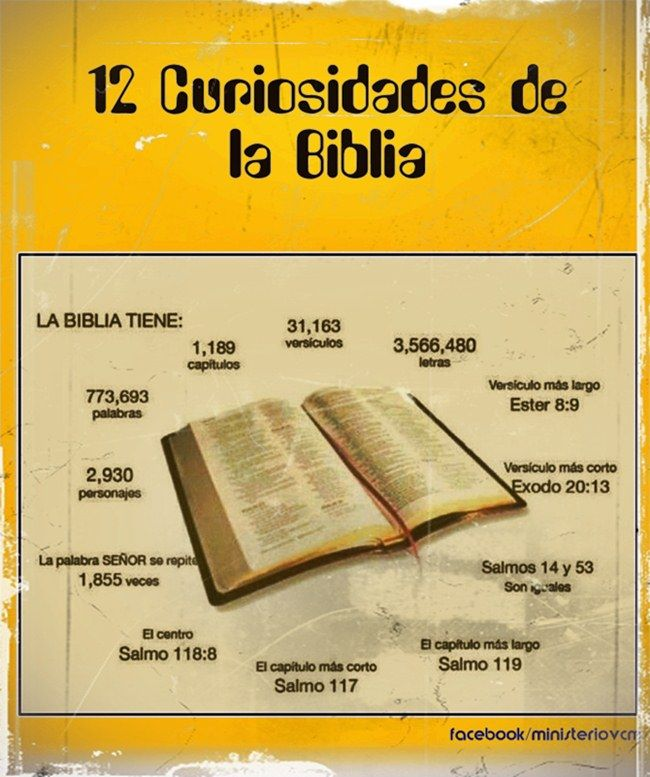 Infografias - Las 12 Curiosidades de la Biblia | El Camino, Jesucristo la luz del Mundo / Ministerio VCM