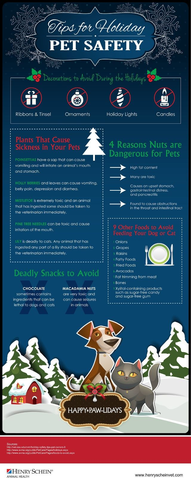 58 best pet care autumn u0026 winter images on pinterest safety
