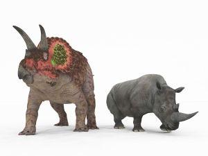 Dinosaurs warm up : Study of mammalian bones offers clues to dinosaur physioloty