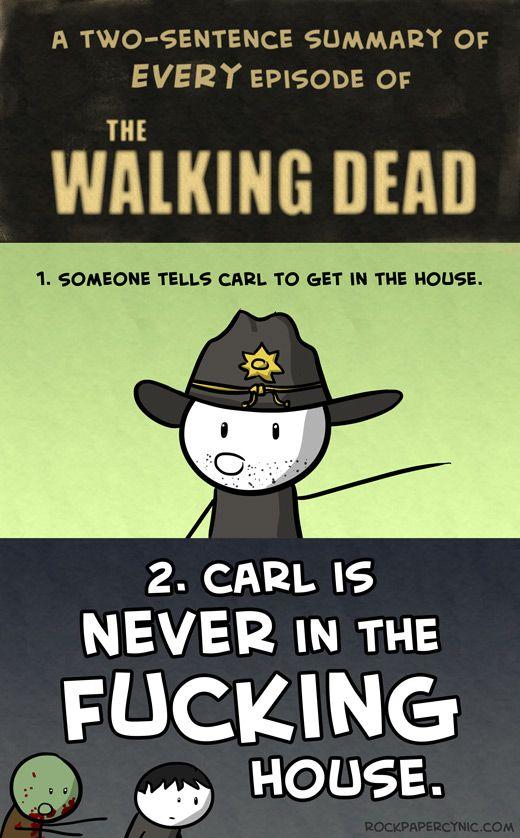 Walking Dead summary.: Dust Jackets, The Walks Dead, Books Jackets, Walking Dead, Kids, Walkingdead, Zombies, True Stories,  Dust Wrappers