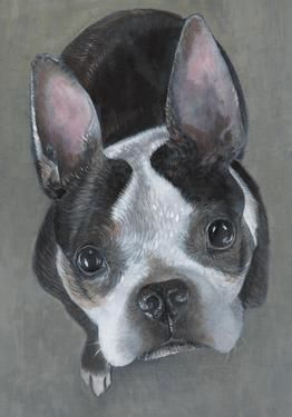 "Saatchi Online Artist Donna McGlynn; Painting, ""French Bulldog"" #art"