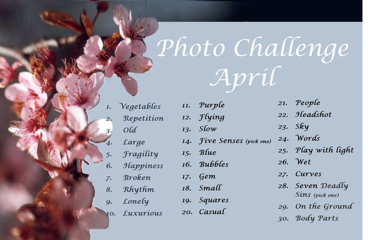 photography challenge | April Photo Challenge | Buster's House