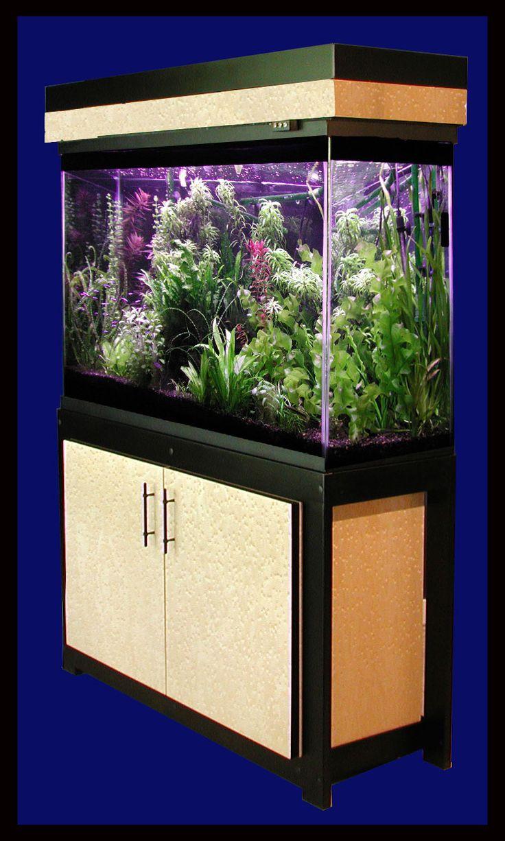 Best 25 20 gallon aquarium ideas on pinterest small for Fish tank 20 gallon
