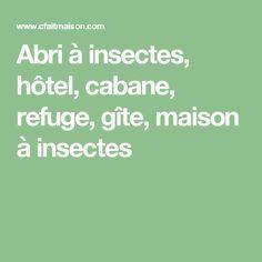 Abri à insectes, hôtel, cabane, refuge, gîte, maison à insectes