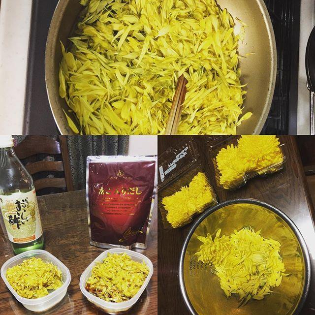 2016/11/19 20:12:25 duckling1085 また菊の花の酢の物とお浸しを作りました🌻✨💕。香りも良くて美味しいので😍最近よく作ります😍。栄誉も豊富だし解毒作用、抗炎症作用などもあり肝臓にも良いとか🤔。 #菊の花#菊の酢の物#菊のお浸し#健康#あごだし#chrysanthemum#goodforhelth #veneger#shoyu  #健康