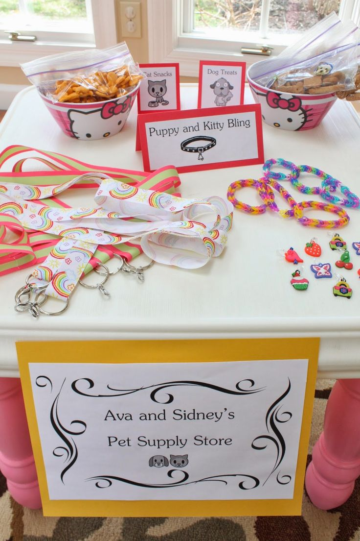 Sidney turned 4 earlier this month and Ava turns 6 in April.  Somehow I got away with combining their birthday parties this year!  It hel...