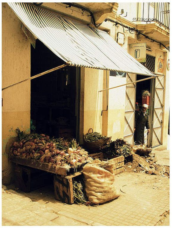 tipos de toldos para tu jardn o terraza - Tipos De Toldos