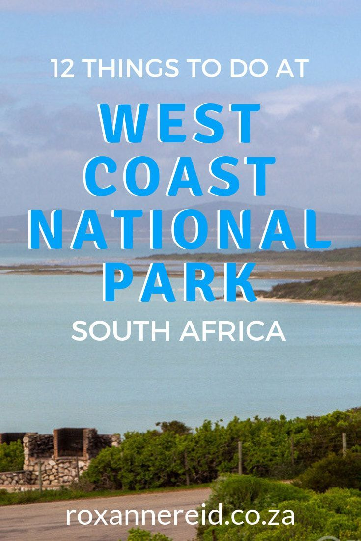 12 things to do in West Coast National Park, stay …