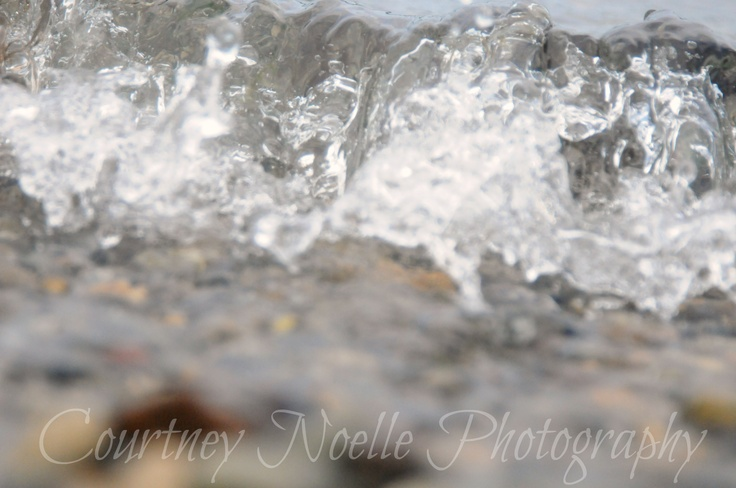 Courtney Noelle Photography