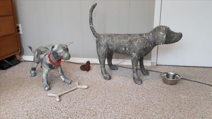 Chuchi & Flaco being dogs
