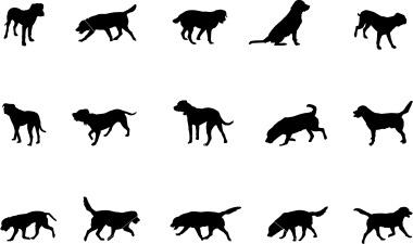 labrador silhouettes dog tattoo pinterest labradors and silhouette. Black Bedroom Furniture Sets. Home Design Ideas