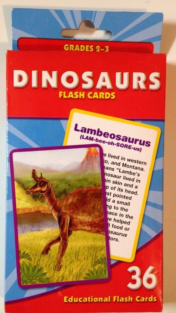 Grades 2 - 3 Educational Dinosaurs History Flash Cards #Unbranded