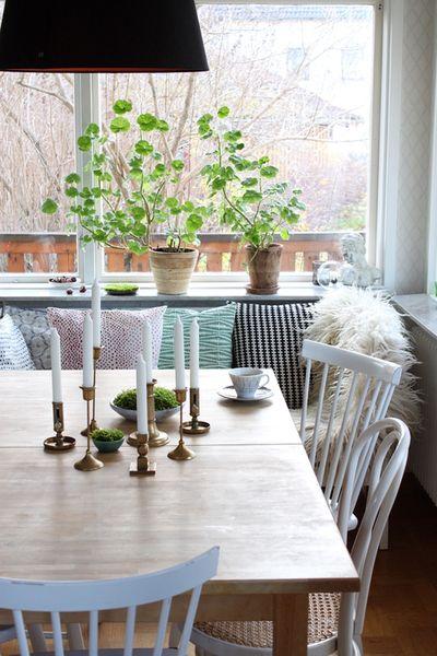 Moss and brass candlesticks