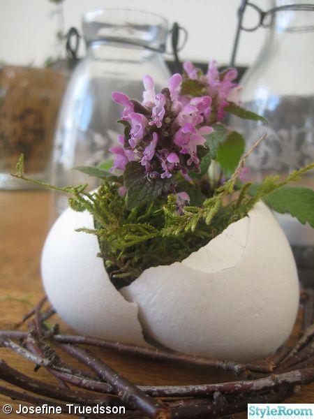 blomma,blommor,ägg,äggskal,påsk,påskdekoration,fågelbo