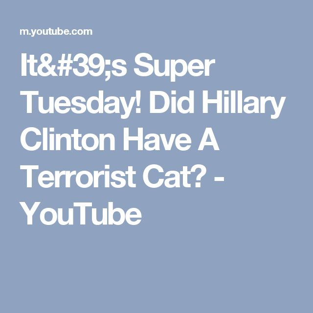 It's Super Tuesday! Did Hillary Clinton Have A Terrorist Cat? - YouTube